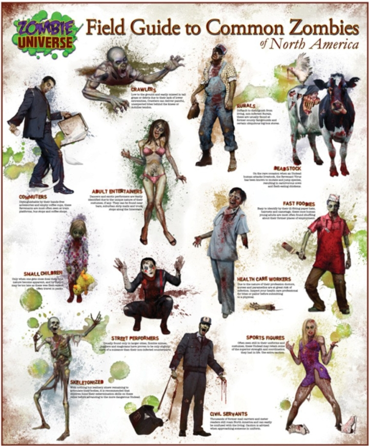Zombie Guide