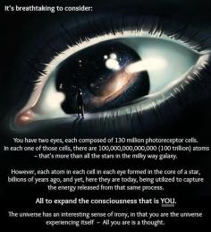 MindSpaceApocalypse@facebook